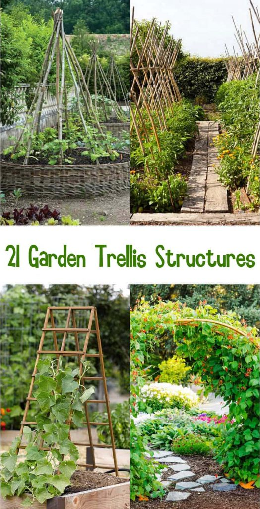 21 EASY DIY GARDEN TRELLIS IDEAS & VERTICAL GROWING STRUCTURES